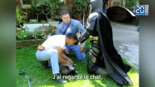 captain america batman sauveurs chats? batman captain america fait divers