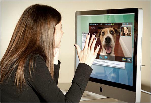 petchatz visio chien geek gkdv gadgets geekndev