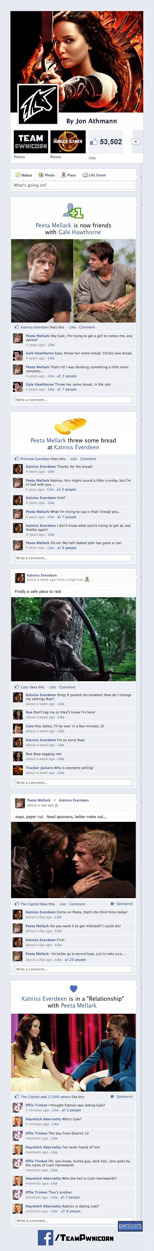profil facebook hungers games