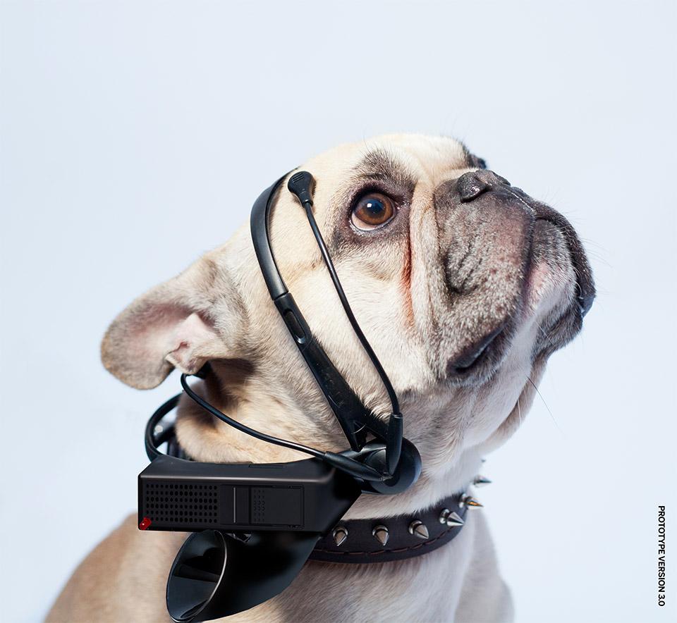 no more woof gadget faire parler chien geek geekndev gkdv